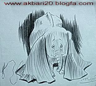 طراحی از فیل از حسین اکبری